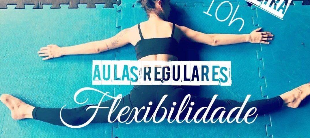flexibilidade 10h